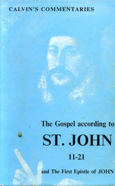 Image for THE GOSPEL ACCORDING TO ST JOHN and THE FIRST EPISTLE OF JOHN (two volumes)