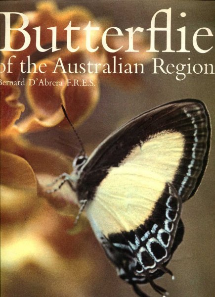 Image for BUTTERFLIES OF THE AUSTRALIAN REGION