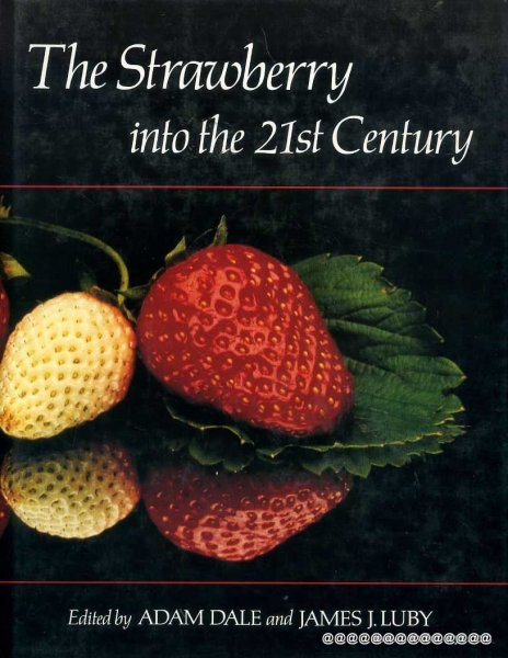 Image for THE STRAWBERRY INTO THE 21ST CENTURY Proceedings of the third North American Strawberry Conference, Houston, Texas 14-16 February 1990