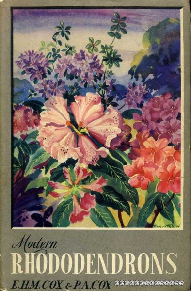 Image for MODERN ROHODODENDRONS