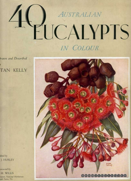 Image for 40 AUSTRALIAN EUCALYPTS IN COLOUR drawn and described