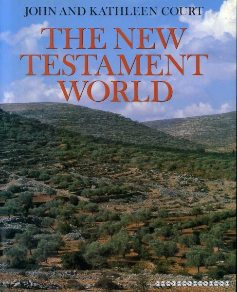Image for The New Testament World