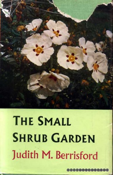 Image for THE SMALL SHRUB GARDEN