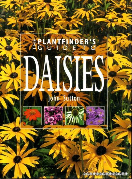 Image for The Plantfinder's Guide to Daisies
