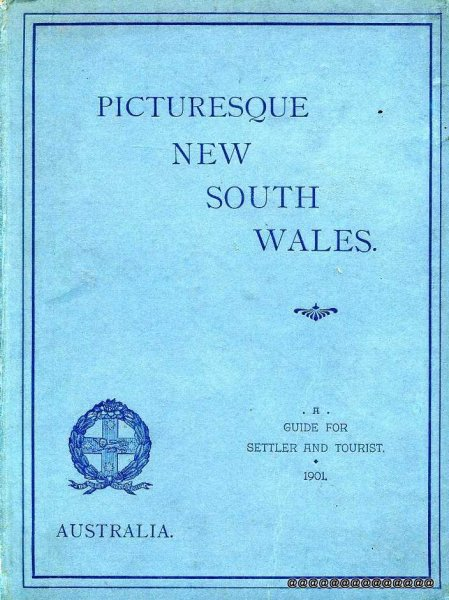 Image for Picturesque New South Wales : An Illustrated Guide for Settler and Tourist