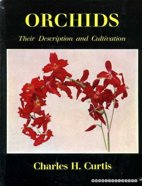 Image for ORCHIDS their description and cultivation