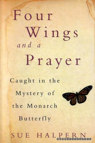 Image for FOUR WINGS AND A PRAYER caught in the mystery of the Monarch Butterfly