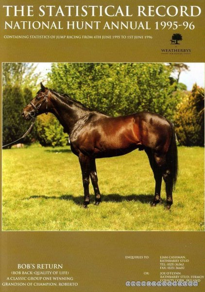 Image for THE STATISTICAL RECORD National Hunt Annual 1995/96