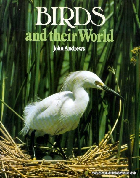 Image for Birds and Their World