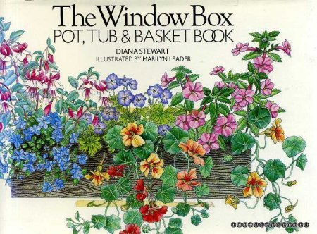 Image for The Window Box: Pot, Tub and Basket Book