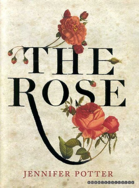 Image for The Rose : An Illustrated History (Limited edition)