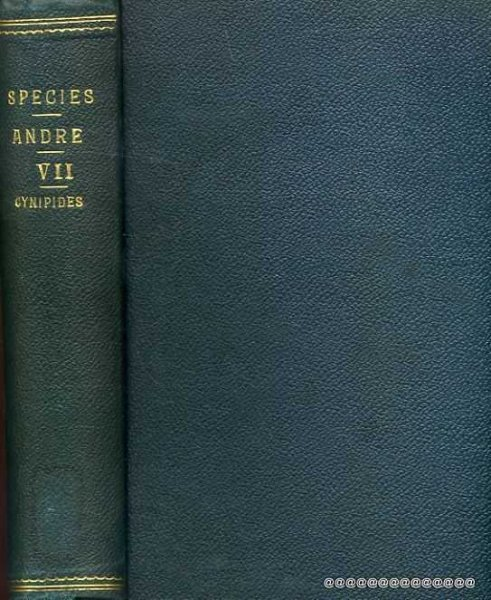 Image for Species Des Hymenopteres D'Europe & D'Algerie volume 7 Cynipides