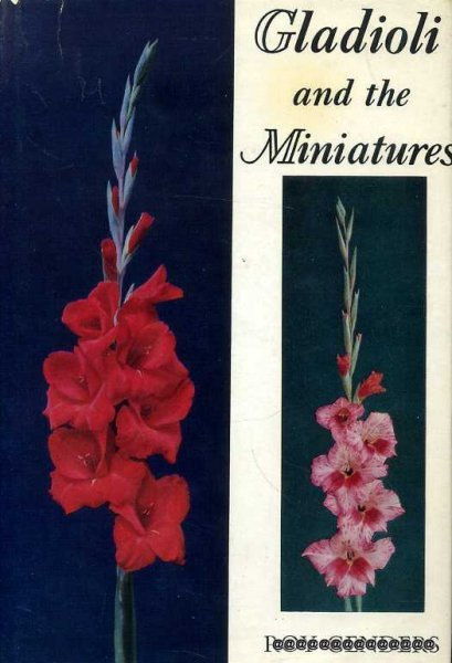 Image for GLADIOLI AND THE MINIATURES