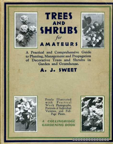 Image for Trees and Shrubs for Amateurs