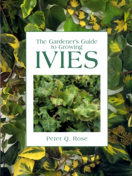 Image for The Gardener's Guide to Growing Ivies