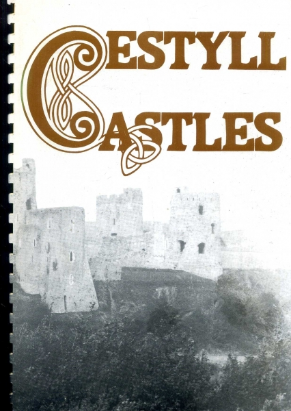 Image for Cestyll / Castles A Brief Guide to the Castles of Carmarthenshire