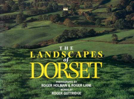 Image for The Landscapes of Dorset
