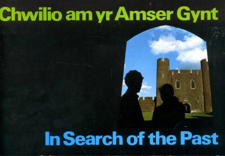 Image for In Search of the Past / Chwilio am yr Amser Gynt