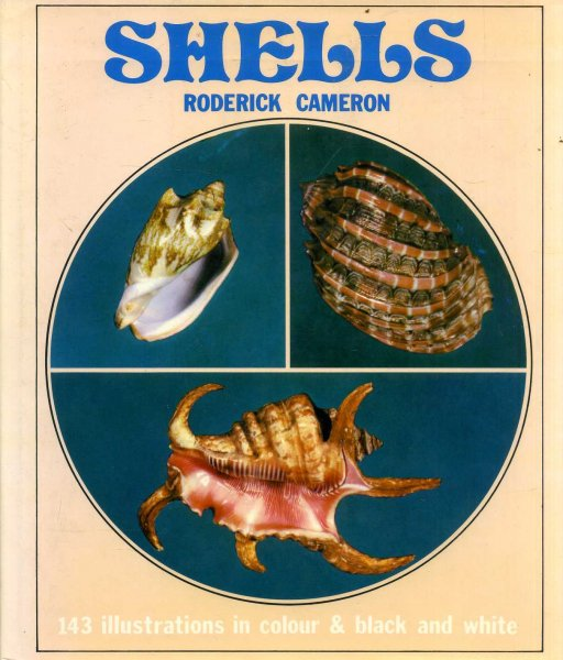 Image for Shells