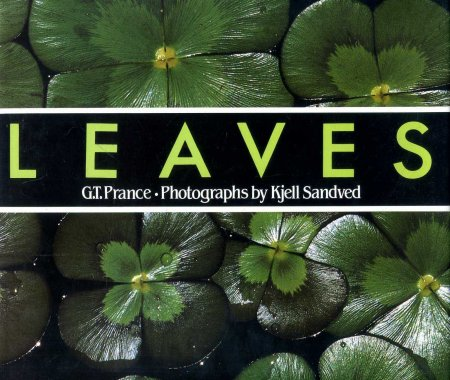 Image for Leaves : The Formation, Characteristics and Uses of Hundreds of Leaves Found in All Parts of the World