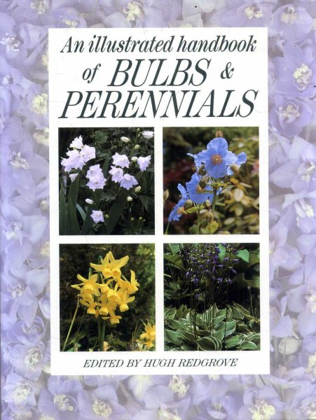 Image for An Illustrated Handbook of Bulbs and Perennials