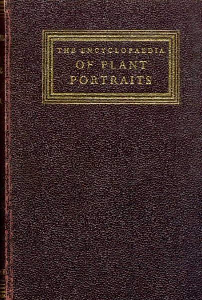 Image for The Encyclopedia of Plant Portraits
