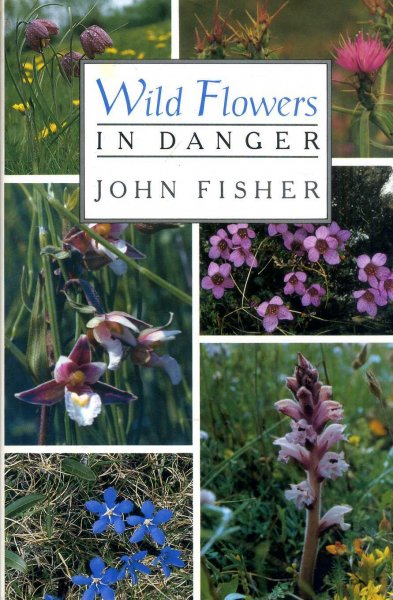 Image for Wild Flowers in Danger