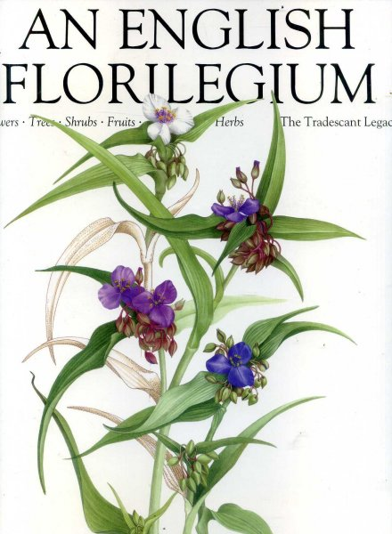 Image for An English Florilegium