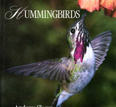 Image for Hummingbirds