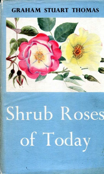 Image for Shrub Roses of Today