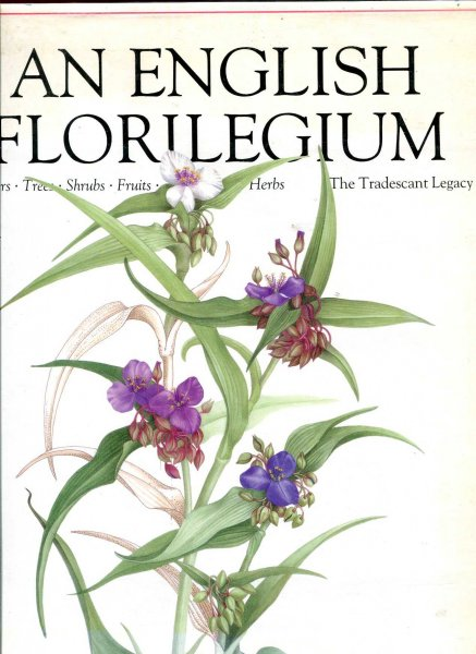 Image for An English Florilegium Flowers, Trees, Shrubs, Fruits, Herbs - The Tradescant Legacy