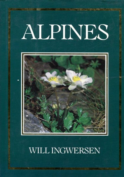 Image for Alpines