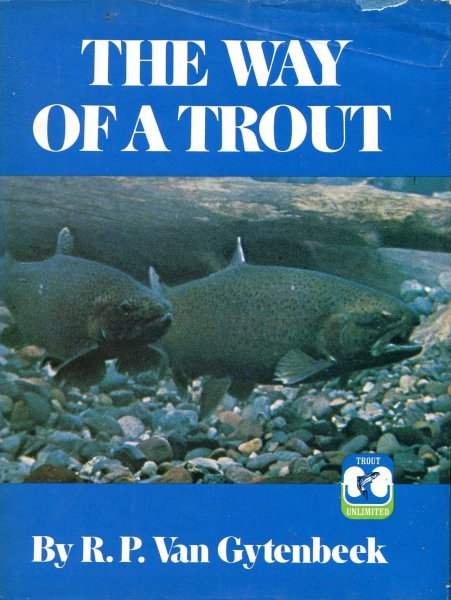 Image for The Way of a Trout