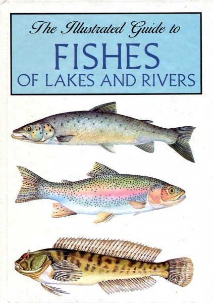 Image for The Illustrated Guide to Fishes of Lakes and Rivers