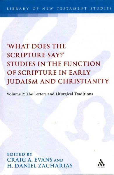 Image for What Does the Scripture Say? : Studies in the Function of Scripture in Early Judaism and Christianity, Volume 2 : The Letters and Liturgical Traditions