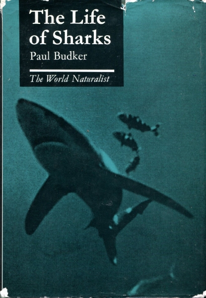 Image for The Life of Sharks (The World Naturalist)
