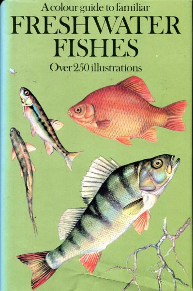 Image for Colour Guide to Familiar Freshwater Fishes