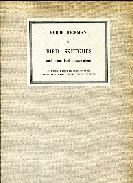 Image for Bird Sketches and Some Field Observations