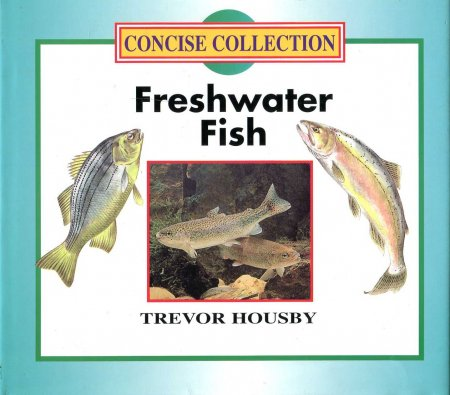 Image for Freshwater Fish (Concise Collection)