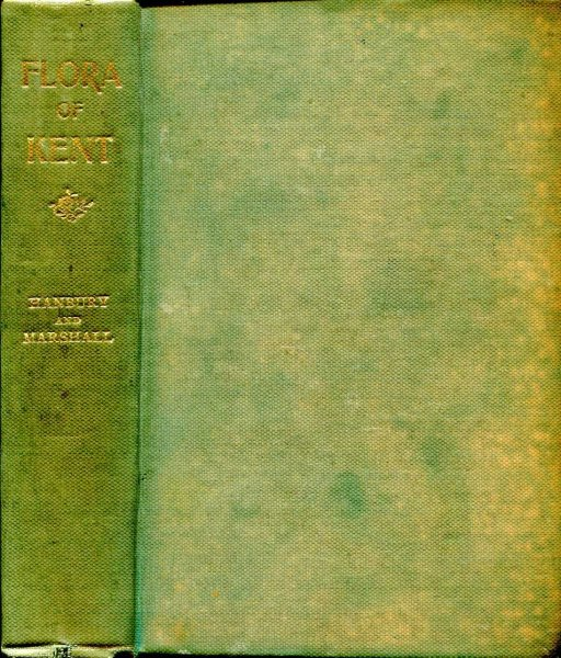 Image for Flora of Kent