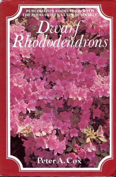 Image for Dwarf Rhododendrons