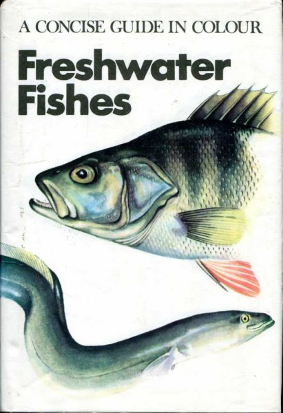 Image for Freshwater Fishes (Concise Guides in Colour)