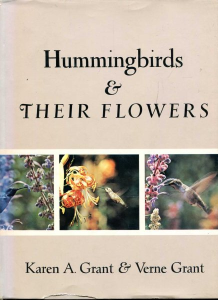 Image for Hummingbirds and their flowers