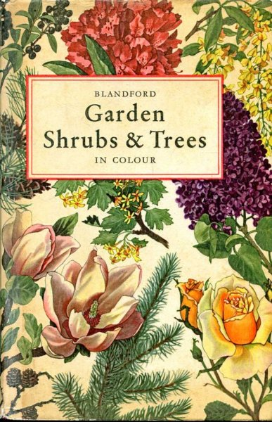 Image for Garden Shrubs and Trees in colour