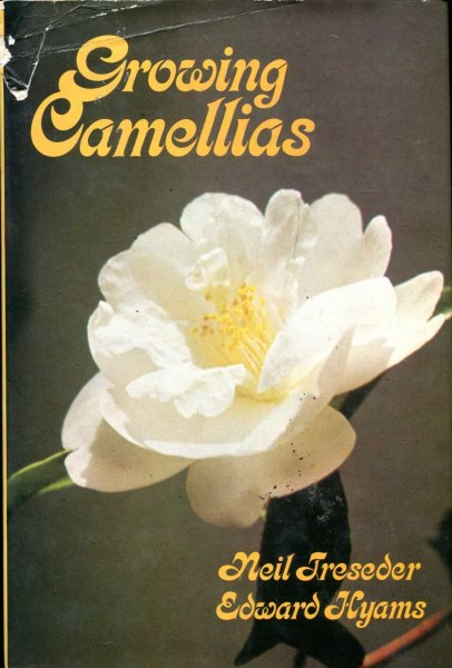 Image for Growing Camellias