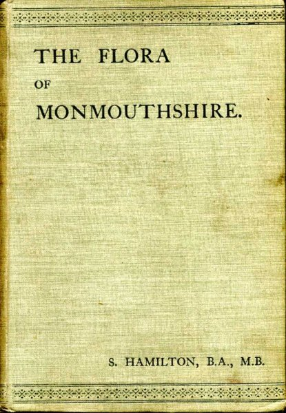 Image for The Flora of Monmouthshire Being A Catalogue of all the Flowering Plants known to be native to the County...with A List of Ferns