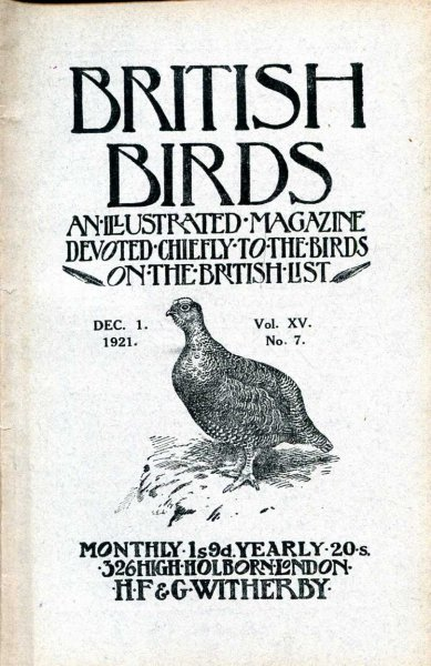 Image for British Birds An Illustrated Magazine devoted chiefly to the birds on the British List, volume XV, No 7, December 1 1921