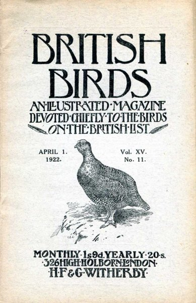Image for British Birds An Illustrated Magazine devoted chiefly to the birds on the British List, volume XV, No 11, April 1 1922