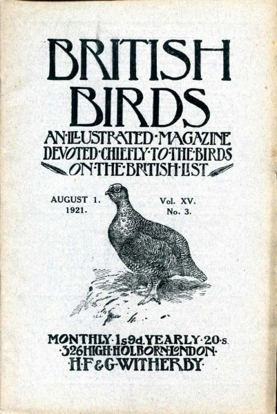Image for British Birds An Illustrated Magazine devoted chiefly to the birds on the British List, volume XV, No 3, August 1 1921