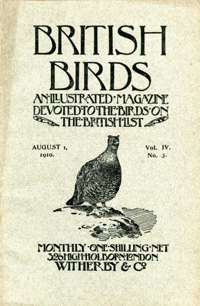 Image for British Birds An Illustrated Magazine devoted chiefly to the birds on the British List, volume IV No 3, August 1 1910